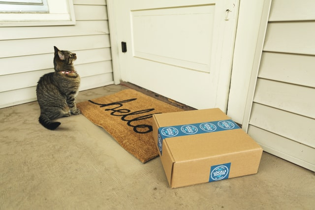 a cat and a package at a front door